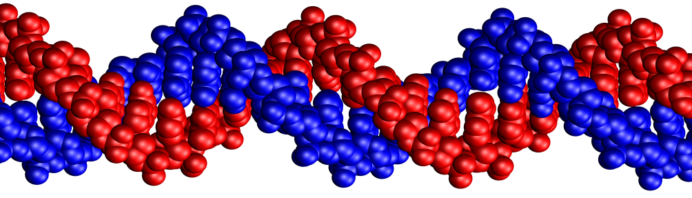 Aykut Erbas Research Lab
