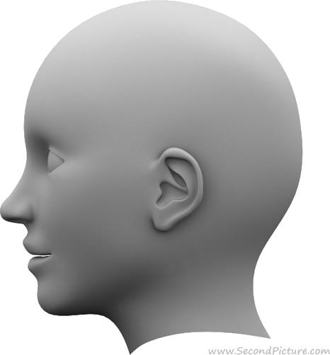 head-xparent